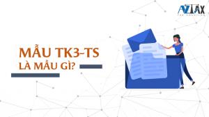 Mẫu TK3-TS là gì?